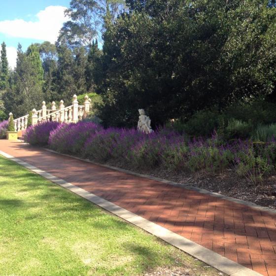 garden 9